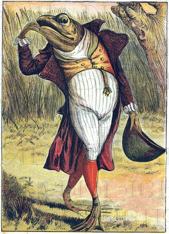 Weird Wacky Dressed Frog. Vintage Illustration
