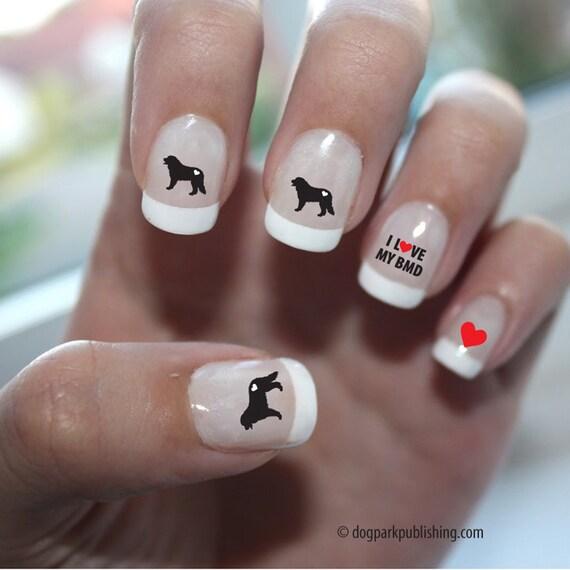 bernese mountain dog love nail
