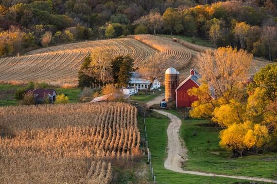 iowa farmscape harvest season corn