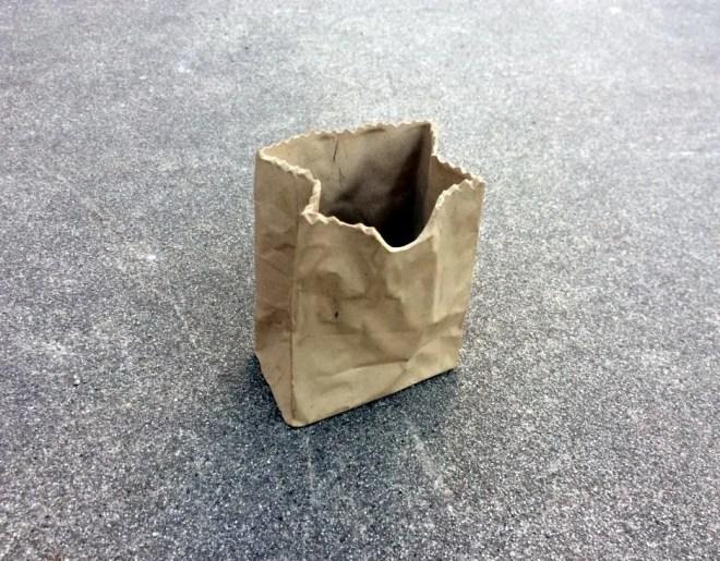 Brown Paper Bag -- Unusua...