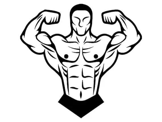 Logo Clipart Bodybuilding