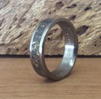 Titanium Ring Meteorite Ring Dinosaur Bone Ring Mens Ring