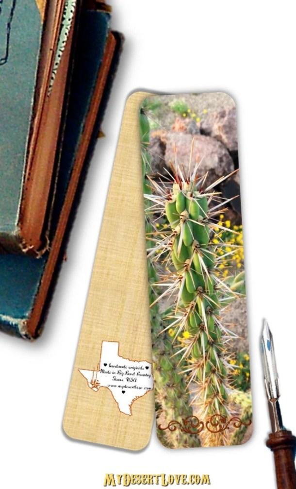 Wild Cholla Cactus Photo ...