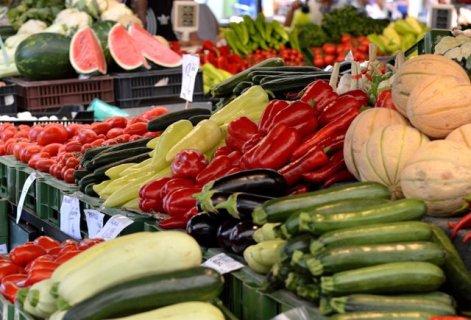 Resultado de imagen de castellon Comercio al por mayor de frutas y hortalizas