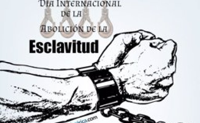 Por Qué Se Celebra El 2 De Diciembre El Día Internacional
