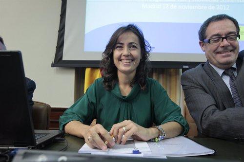 María Seguí, directora de la Tráfico