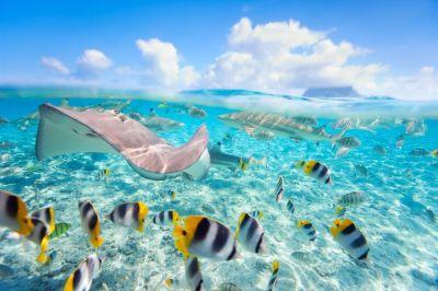 30 idyllic honeymoon beach destinations - Easyvoyage