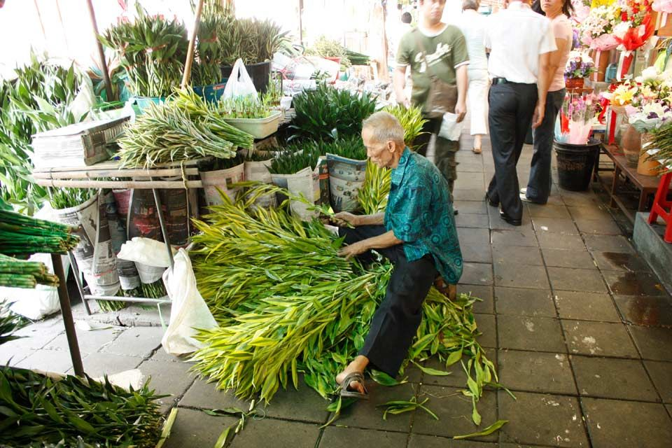 Mercato dei fiori a Bangkok  Pak Khlong Talat  Thailandia
