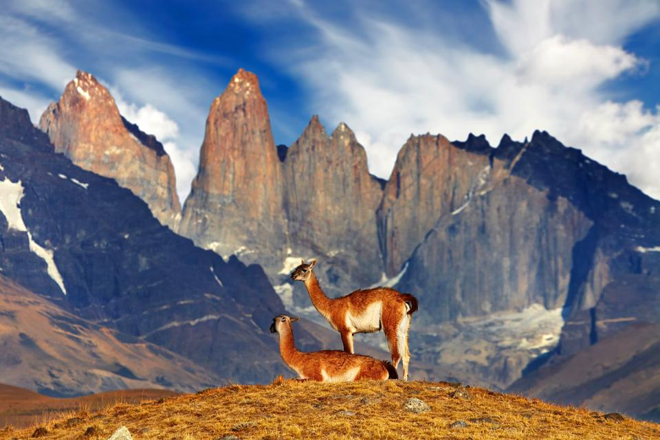 Il Parco nazionale di Torres del Paine  Cile