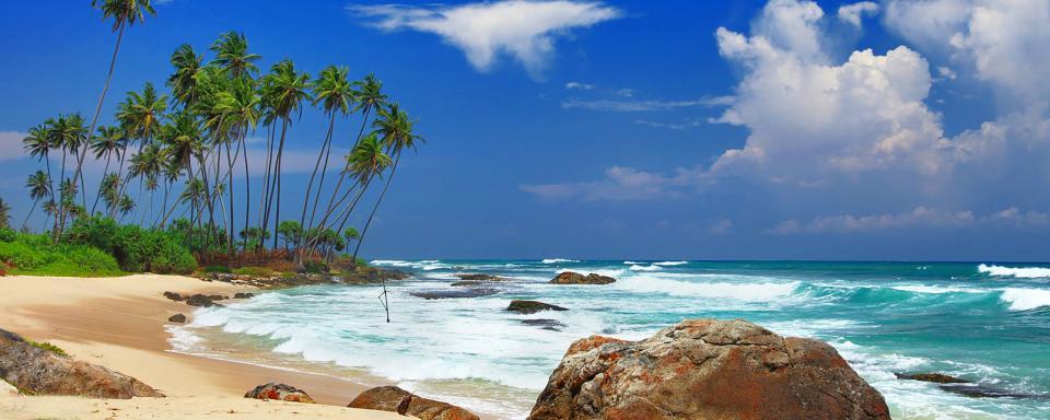 Flge Sri Lanka  Gnstige Flge  Easyvoyage Sri Lanka