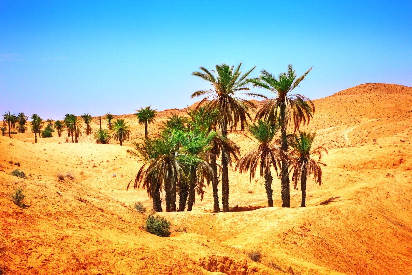 Viaggi Mauritania  Guida Mauritania con Easyviaggio