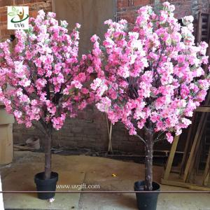 Table Top Cherry Blossom Tree