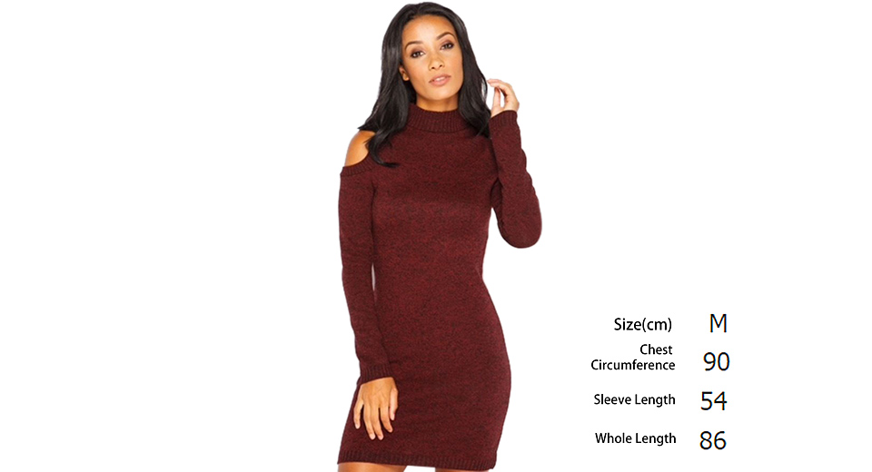 Womens Sexy Cold Shoulder Turtleneck Knitted Sweater Dress (Size M)