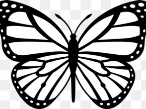 Monarch Butterfly Black And White Drawing Clip Art PNG 785x791px Monarch Butterfly Arthropod Artwork Black Black And White Download Free