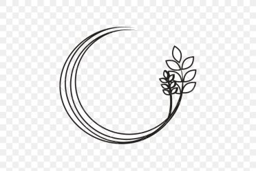 Leaf Branch Silhouette PNG 550x550px Leaf Black And White Body Jewelry Branch Drawing Download Free