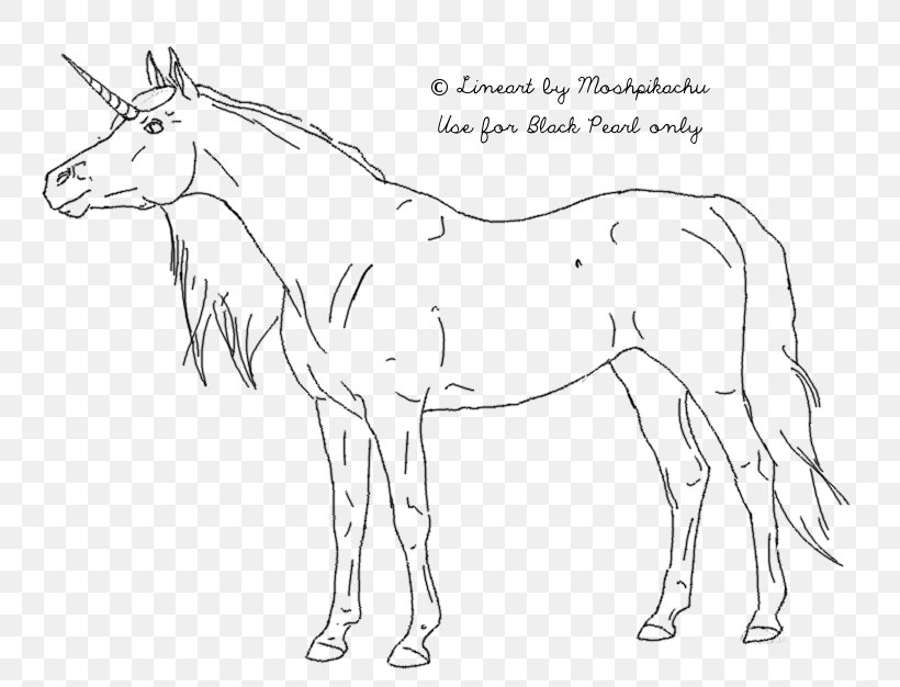 Horse Drawing Line Art Wiring Diagram, PNG, 807x626px