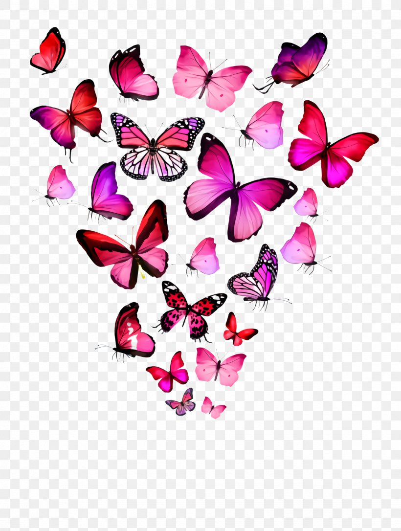 Pink Butterfly Png : butterfly, Butterfly, Heart, Petal, Moths, Butterflies,, 1736x2300px,, Pink,, Butterfly,, Heart,, Herbaceous, Plant,, Magenta, Download