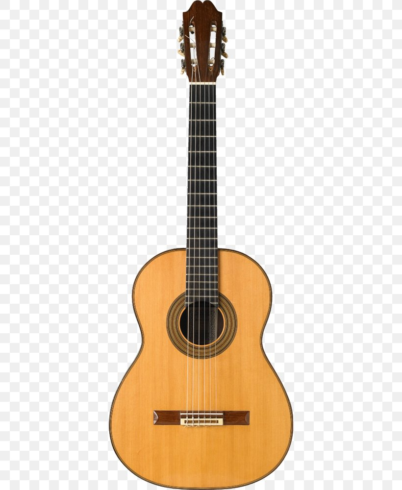 Acoustic Guitar Png : acoustic, guitar, Acoustic, Guitar, Classical, String, Instruments, Twelve-string, Guitar,, 576x1000px,, Electric