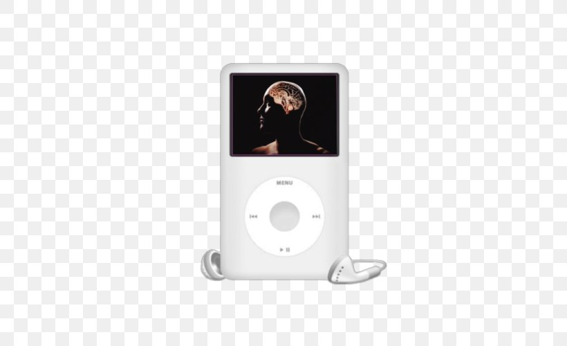 Apple IPod Classic IPod Touch IPod Shuffle MP3 Player IPod