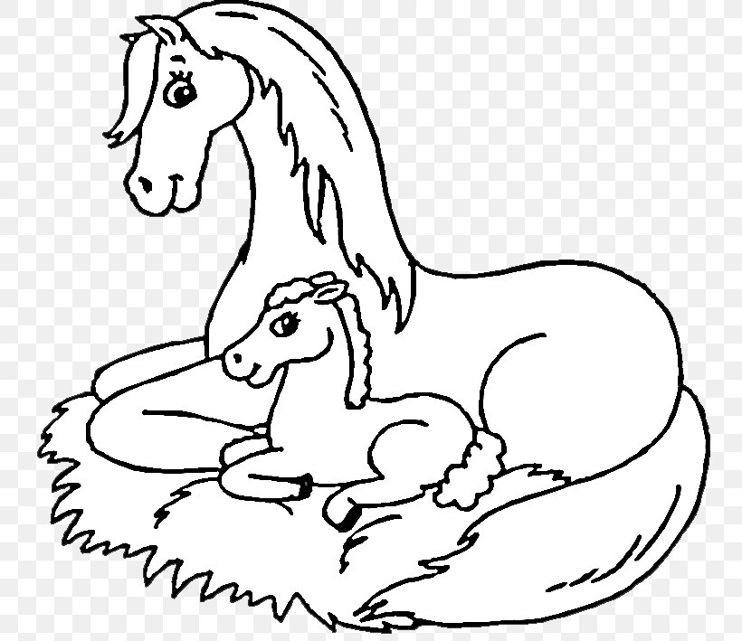 Foal Coloring Book Pony Mustang Colouring Pages, PNG