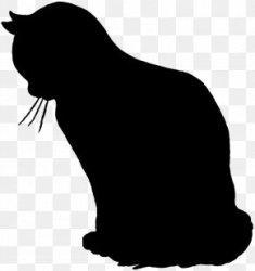 Black Cat Silhouette Kitten Clip Art PNG 1000x1000px Cat Black Black And White Black Cat Calico Cat Download Free