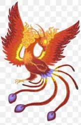 Phoenix Bird Desktop Wallpaper Legendary Creature Drawing PNG 1680x1050px Phoenix Art Bird Close Up Computer Download Free