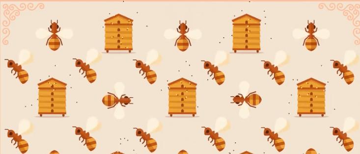 Porque é que as abelhas estão a morrer?