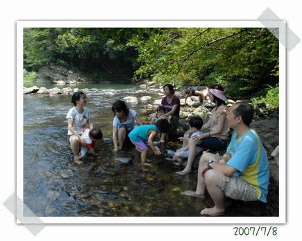 台北小旅行:坪林金瓜寮溪 溪邊的樹