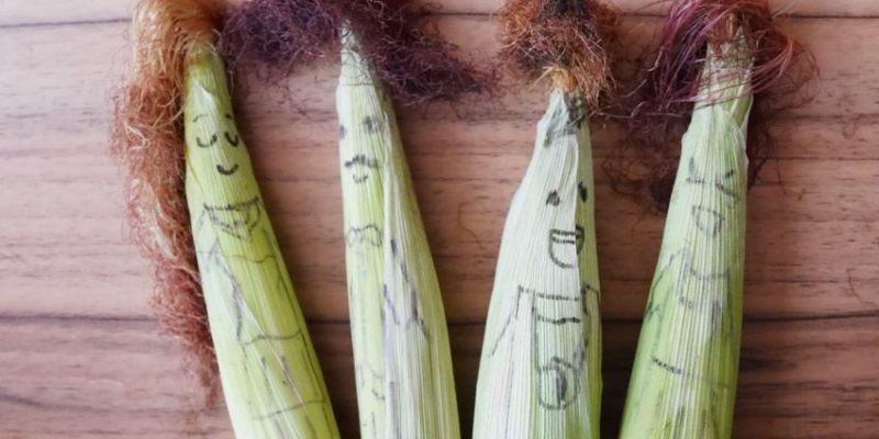 懶人簡易料理DIY︱玉米鬚茶自己煮~小農無農藥有機玉米筍 玉米筍入菜 玉米鬚煮成玉米鬚茶 做成冰塊保存可隨時享用