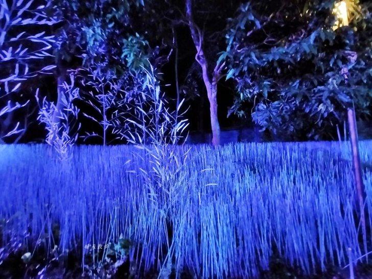 20200220163635 6 - 2020台灣燈會在台中~搭火車去后里逛台中燈會,森林園區好精彩,光之樹、聆聽花開永晝心、無人機秀、森林機械巨蟲秀!