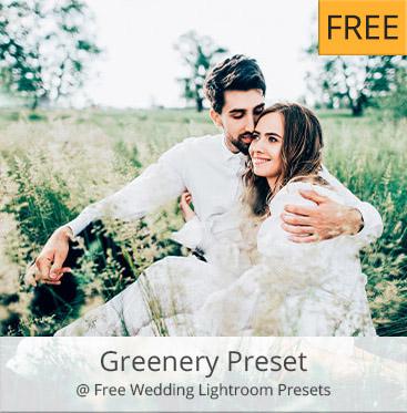 free wedding presets # 69