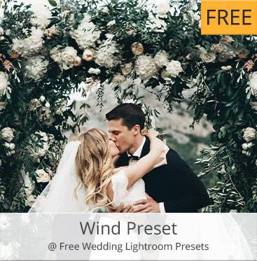 free wedding presets # 39