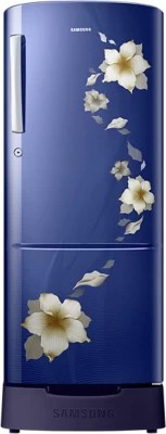 SAMSUNG 212 L Direct Cool Single Door Refrigerator(RR22K287ZU2, Star Flower Blue)