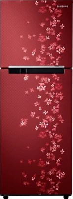 SAMSUNG 251 L Frost Free Double Door Refrigerator(RT28K3082RY, Sanganeri Ring Red)
