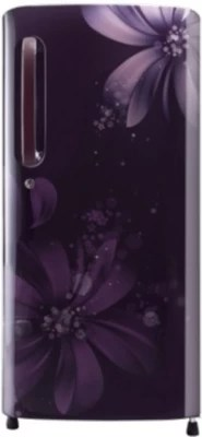 LG 215 L Direct Cool Single Door Refrigerator(GL-D221APAN, Purple Aster)