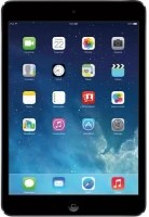 Apple iPad mini 32 GB 7.9 inch with Wi-Fi Only(Space Gray)