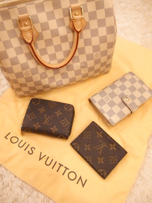 Louis Vuitton-LV-speedy 25-白色棋盤格 N41534-中夾-名片夾-零錢包-monogram-my wedding gift (1)