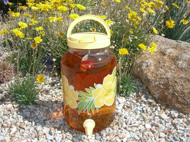 Sun Tea. Photo by Chef*Lee