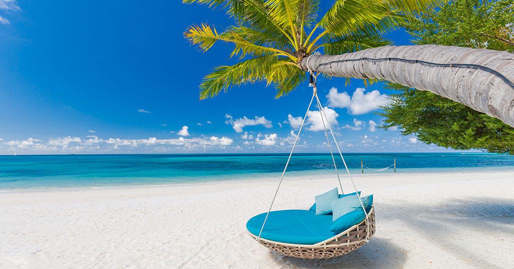 Ceo Q A What Are Your Favorite Vacation Destinations