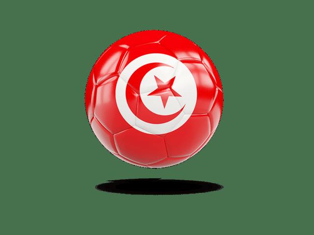 Glossy Soccer Ball. Illustration Of Flag Of Tunisia
