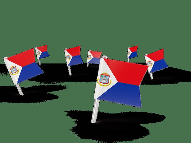 square flag pins illustration