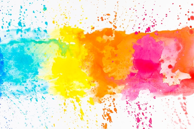 colorful vectors photos and