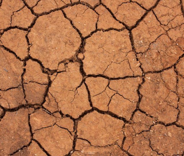 Dry Desert Floor