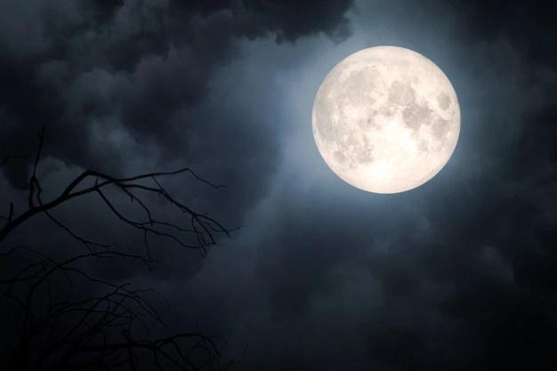 moon vectors photos and