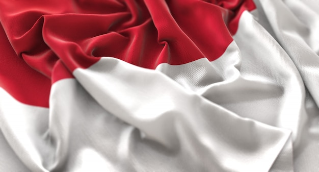 flag indonesia vectors photos