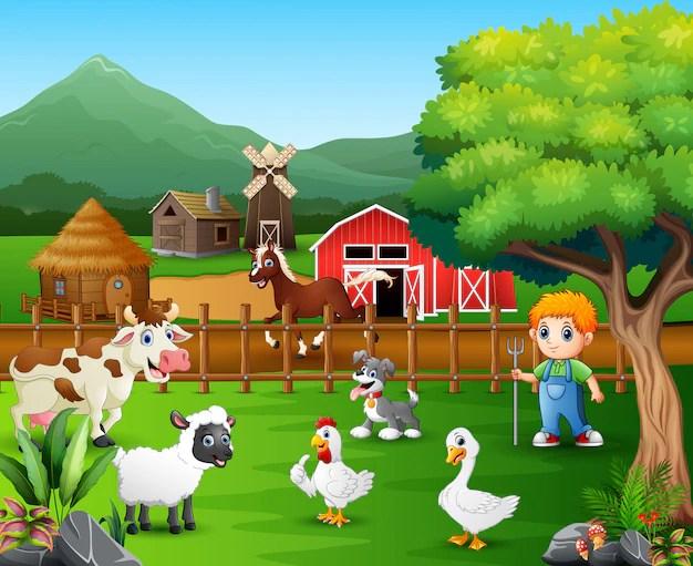 Farm Vectors Photos and PSD files  Free Download