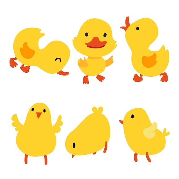 Duck Vectors Photos And PSD Files Free Download