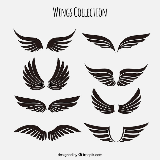 wings vectors photos and