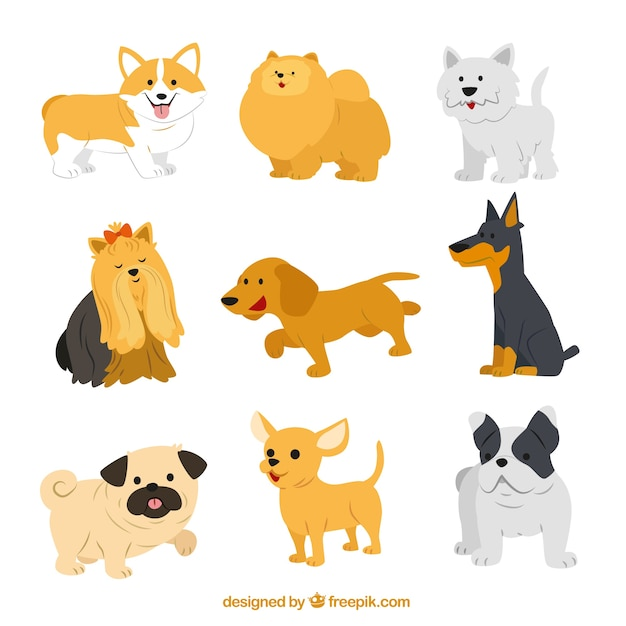 dog diagram outline large dometic thermostat wiring vectors photos and psd files free download cute breeds