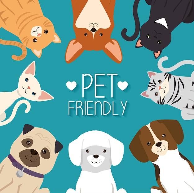dogs and cats pets
